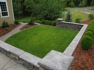 formal wall lawn