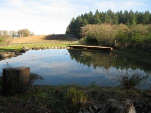 pond dock natural boulders