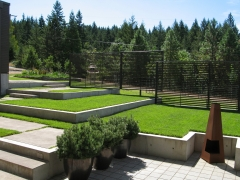 formal lawn areas