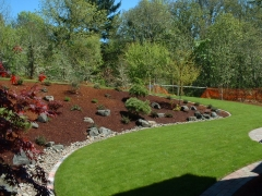 lawn with sloped plantings